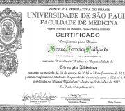 Diploma Residencia de Cirurgia Plástica - Dr. Bruno Luitgards